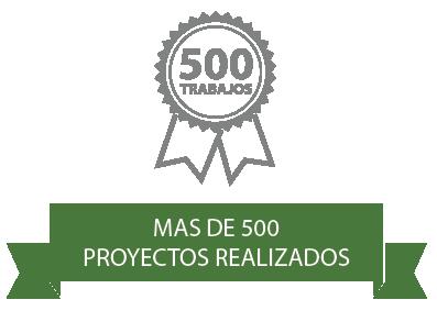 Más de 500 Proyectos realizados