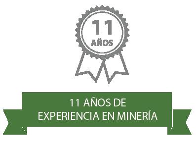 Experiencia en Minería